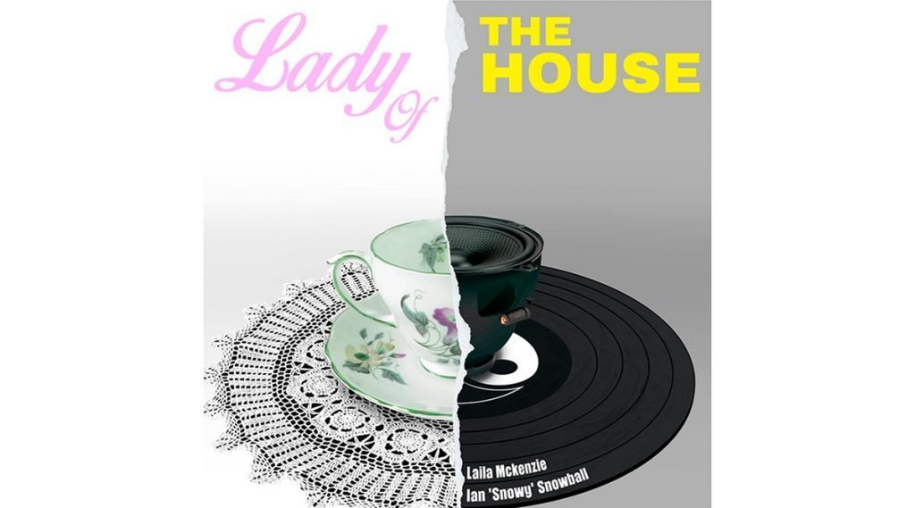 Lady Of The House Book